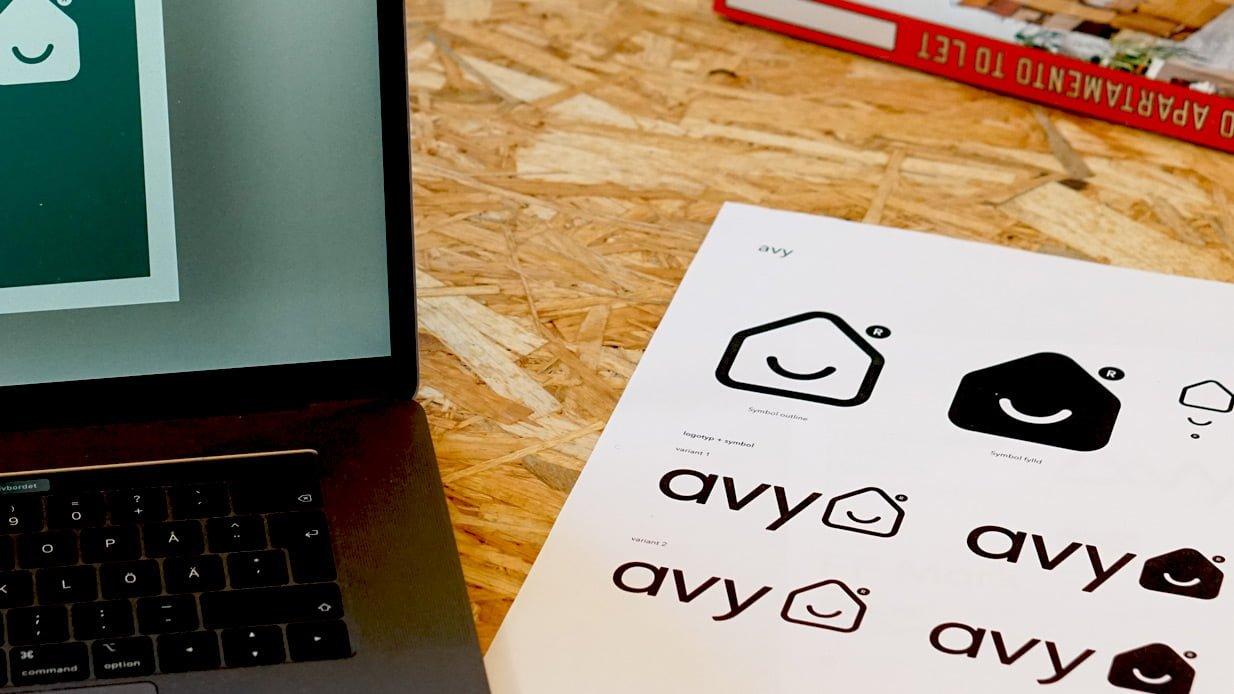 avy-slides3